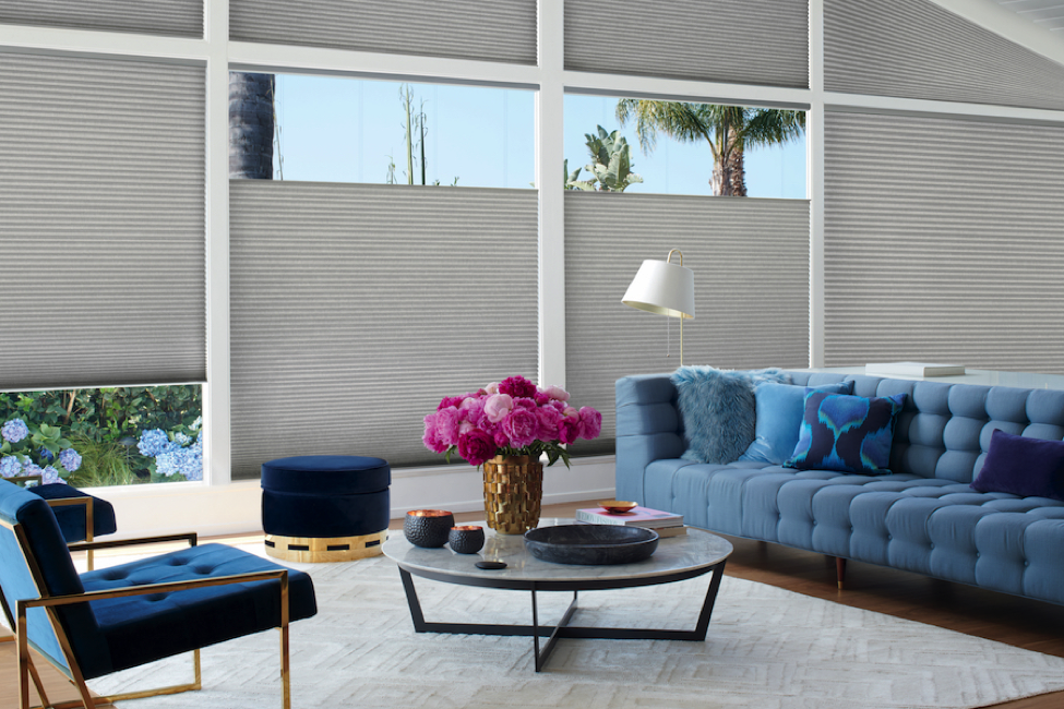 WHAT CAN YOU DO WITH MOTORIZED WINDOW SHADES?